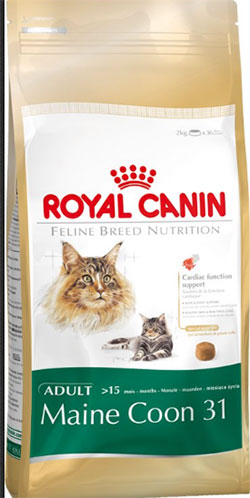 Royal Canin Maine Coon Adult 31